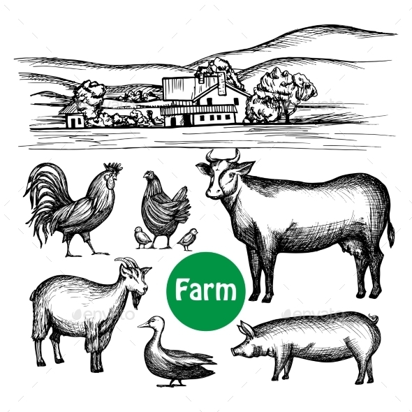 Hand Drawn Farm Set - Animals Characters
