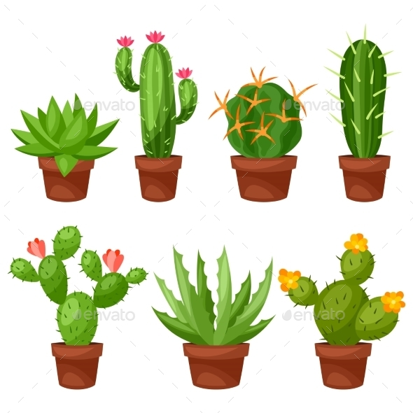 Collection of Abstract Cactuses in Flower Pot - Flowers & Plants Nature