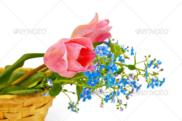 Pink tulips in a basket - Stock Photo - Images