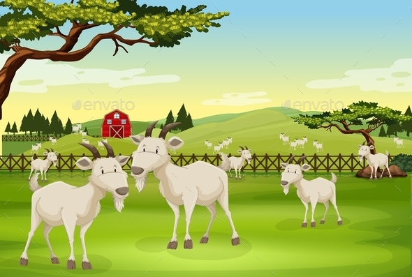Goats - Animals Characters