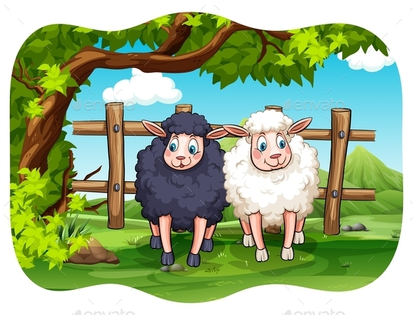 Sheeps - Animals Characters