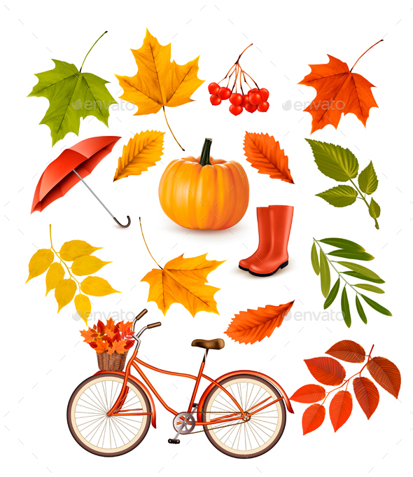 Set Of Colorful Autumn Leaves And Objects Vector