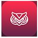 Owl - Multipurpose PowerPoint Presentation - GraphicRiver Item for Sale