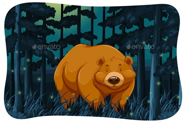 Bear and Fireflies - Animals Characters