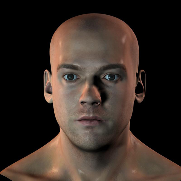 3d human head v1 - 3DOcean Item for Sale