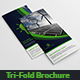 Green Energy Tri-Fold Brochure - GraphicRiver Item for Sale
