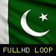 Pakistan Flags - VideoHive Item for Sale