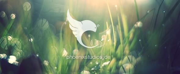 Phoenixstudios banner