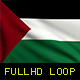Palestine Flags - VideoHive Item for Sale