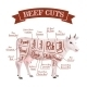 Beef Cuts Illustration