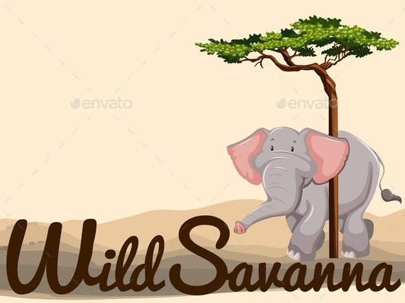 Wild Elephant in Savanna - Animals Characters