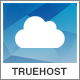 Truehost - WordPress Hosting Theme + WHMCS Nulled
