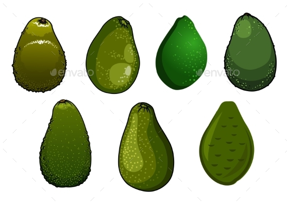 Dark Green Isolated Avocado Fruits - Food Objects