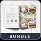 Portfolio Modern Catalog / Brochure Bundle - GraphicRiver Item for Sale