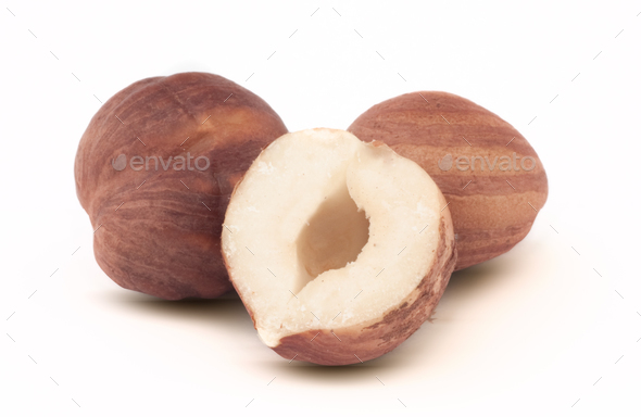 Issolated hazelnut on white background - Stock Photo - Images