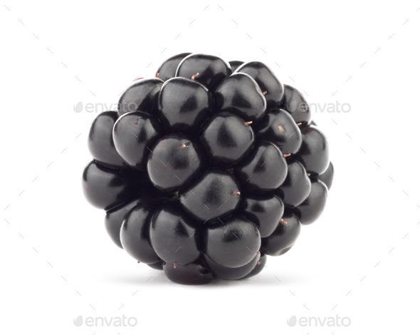 Blackberry - Stock Photo - Images