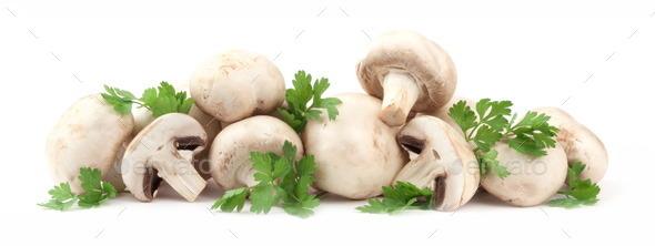 Mushroom - Stock Photo - Images