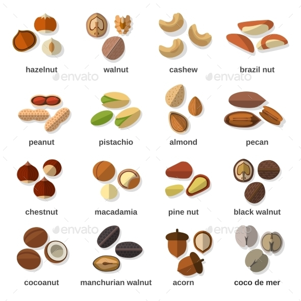 Nuts Flat Icons Set - Food Objects