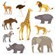 Set Savanna Animals - GraphicRiver Item for Sale