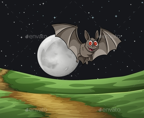 Bat at Night - Animals Characters