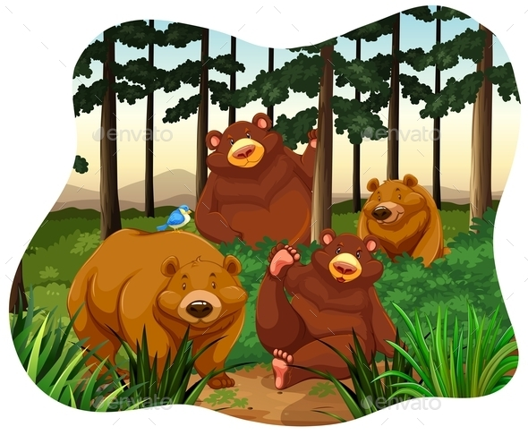 Bears - Animals Characters