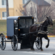 Horse Carriage Passing By