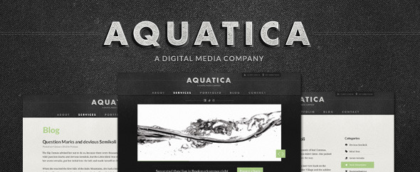 Free Download Aquatica Creative PSD Template Nulled Latest Version