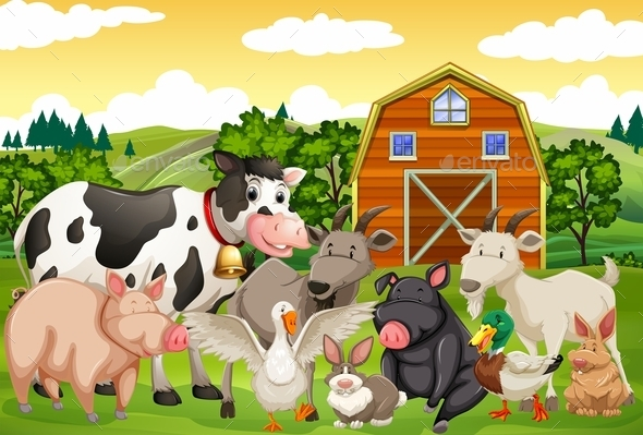 Farm Animals in the Farm - Animals Characters