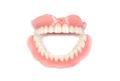 Medical denture - PhotoDune Item for Sale