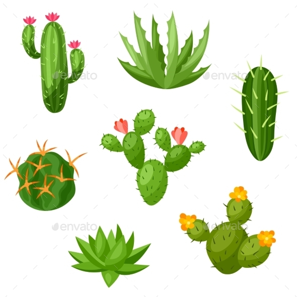 Collection Of Abstract Cactuses And Plants - Flowers & Plants Nature