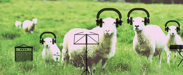 Cafofo audiojungle