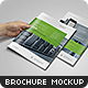 US Letter Brochure / Catalog Mock-Up - GraphicRiver Item for Sale