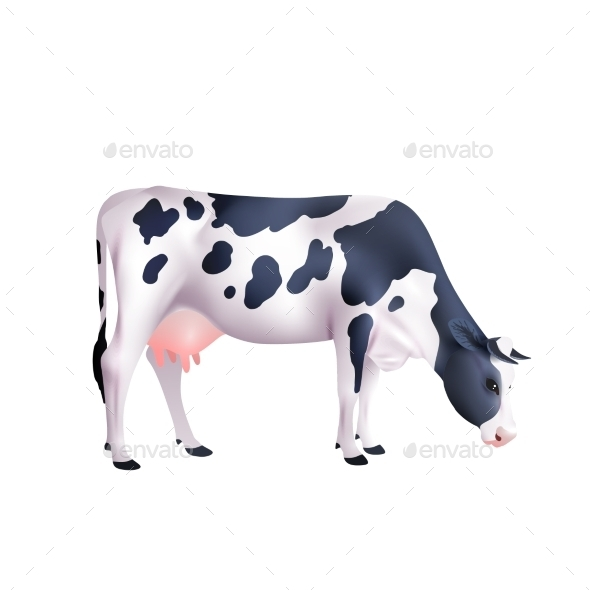 Cow Realistic Illustration - Animals Characters