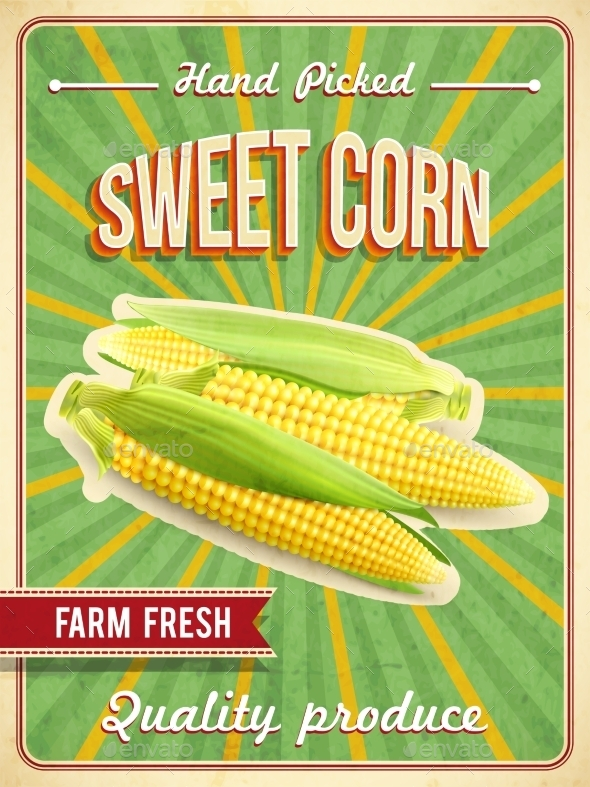 Sweet Corn Poster  - Food Objects