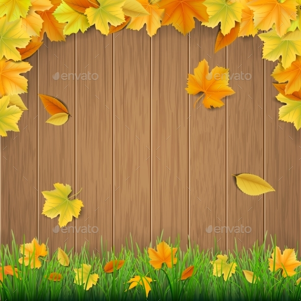 Autumn Leaves Wooden Boards and Green Grass - Seasons Nature