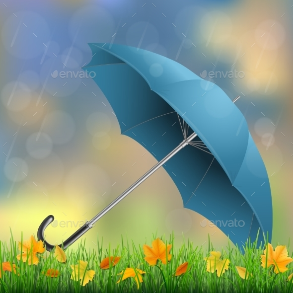Umbrella Grass and Fallen Leaves - Seasons Nature
