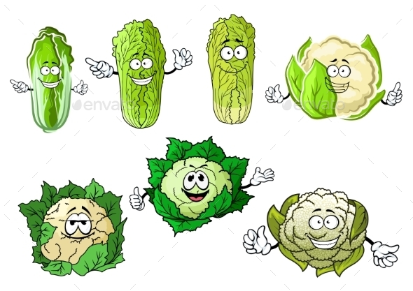 Cartoon Cauliflowers And Chinese Cabbage - Food Objects