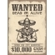 Vitage Wild West Wanted Poster - GraphicRiver Item for Sale