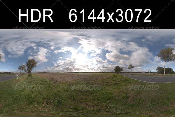Road in fields 3 - 3DOcean Item for Sale