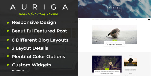 Auriga – A Responsive WordPress Blog Theme