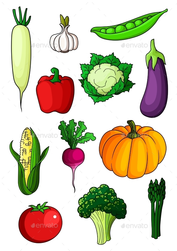 Assorted Cartoon Ripe Vegetables On White - Food Objects