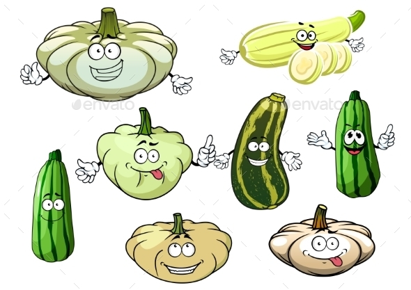 Zucchini, Marrow And Squash Vegetables - Food Objects