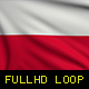 Poland Flags - VideoHive Item for Sale