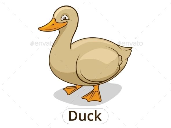 Duck Animal Cartoon - Animals Characters