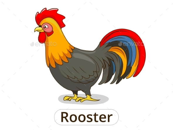 Rooster Animal Cartoon - Animals Characters