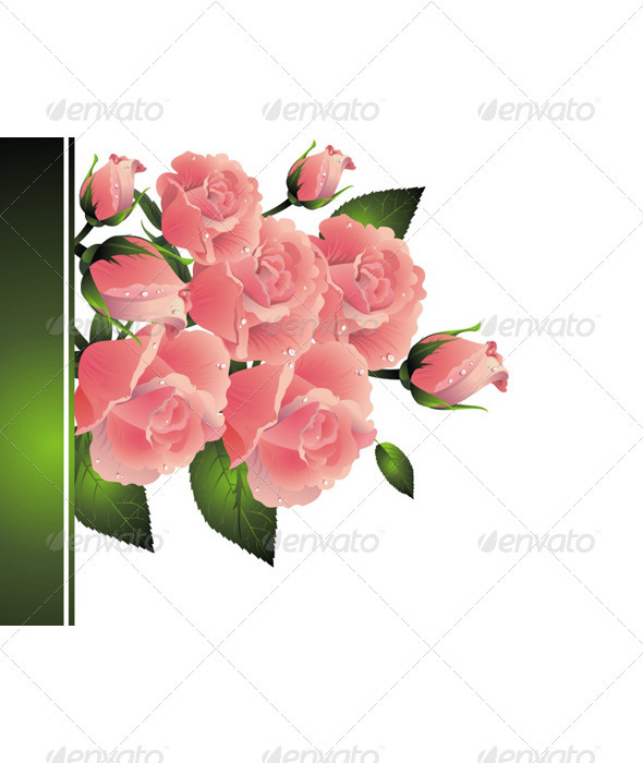 Background with rose - Seasons/Holidays Conceptual