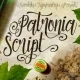 Patronia Script - GraphicRiver Item for Sale