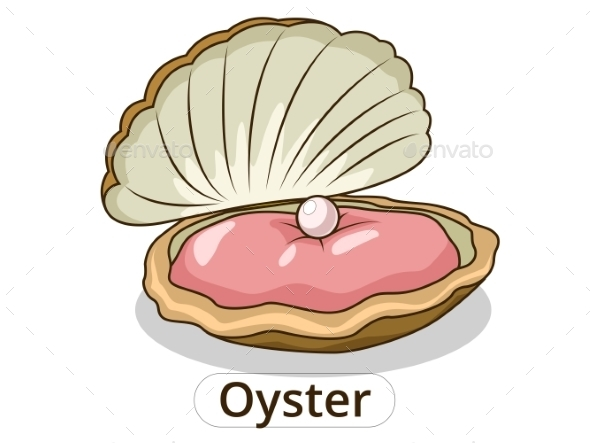Oyster Underwater Animal Cartoon Illustration  - Animals Characters