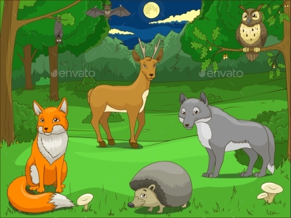 Forest with Cartoon Animals Educational Game  - Landscapes Nature