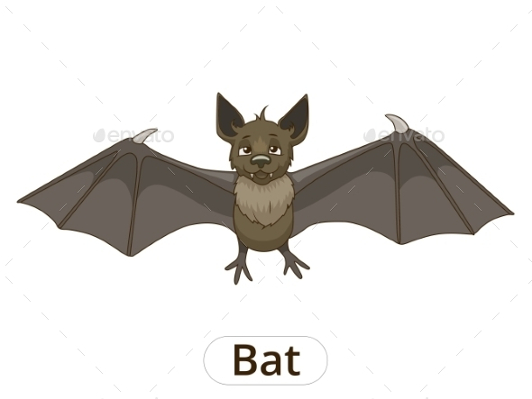 Forest Animal Bat Cartoon - Halloween Seasons/Holidays